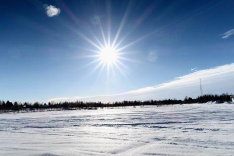 Solen gassar på....den här från igår